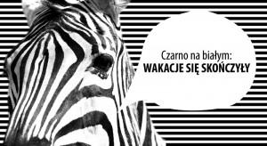 koniec-wakacji-zebra1